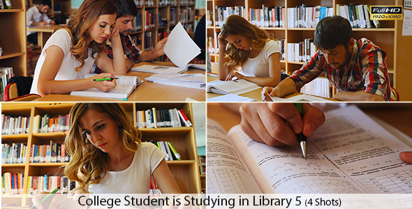 College Students are Studying in Library
