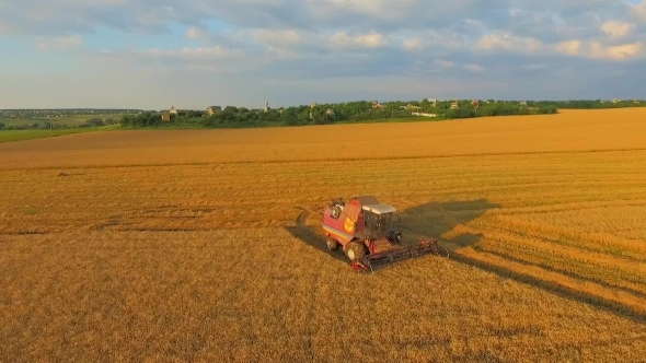 Combine On Harvest Field In Ukraine