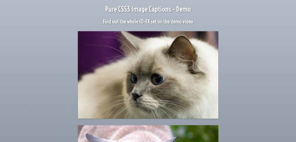 Pure CSS3 Captions