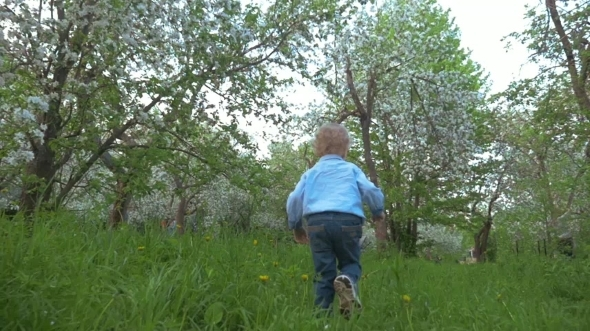Boy Walking In The Garden
