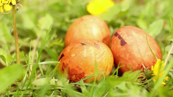 Easter Eggs In Grass 04