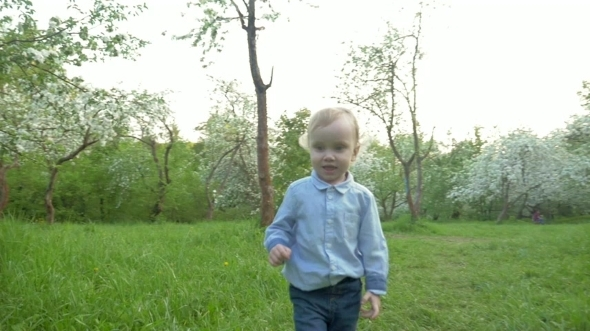 Little Boy Walking Among The Trees