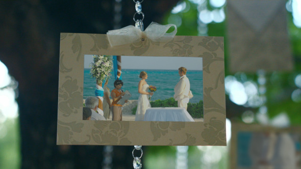 Photo Gallery Perfect Wedding