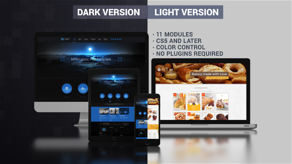 Website Presentation (Dark & Light)