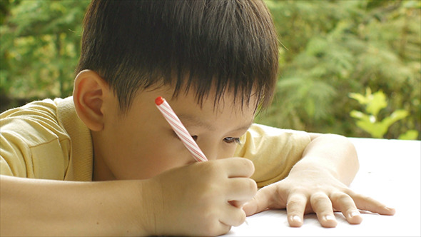 Young Boy Doing Homework 05