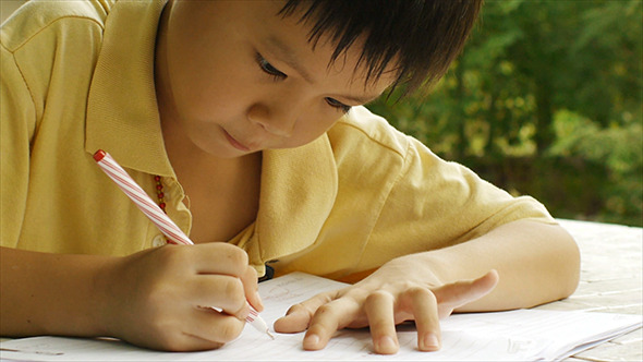 Young Boy Doing Homework 07