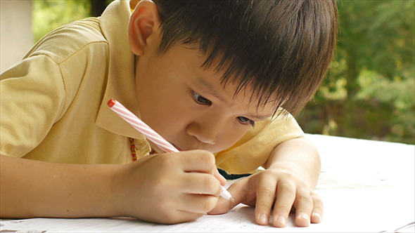 Young Boy Doing Homework 08