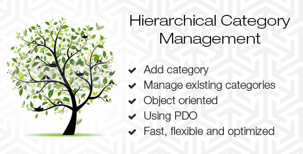 Hierarchical Category Management